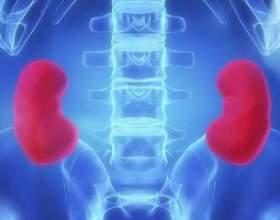 Симптоми захворювань нирок фото