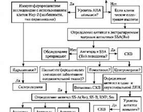 Титр антитіл до нуклеарним антигенів (антинуклеарних фактор) в сироватці кроⳠфото